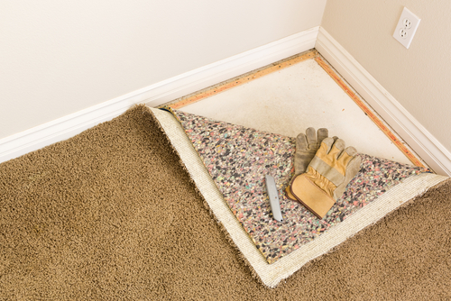 How do I know if there is mold under my carpet