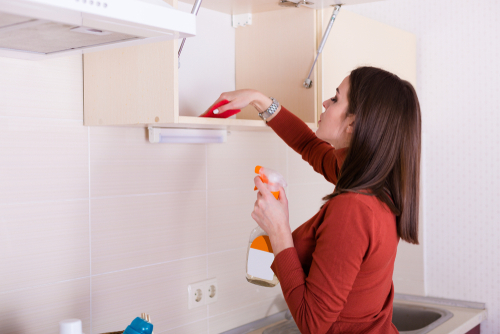 What to clean inside kitchen cabinets with